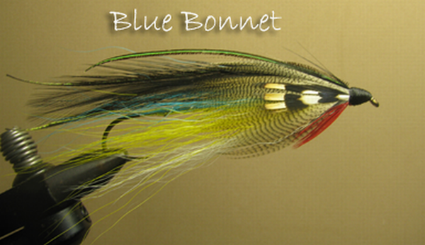 Blue Bonnet Smelt